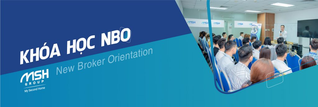 NBO MSH GROUP